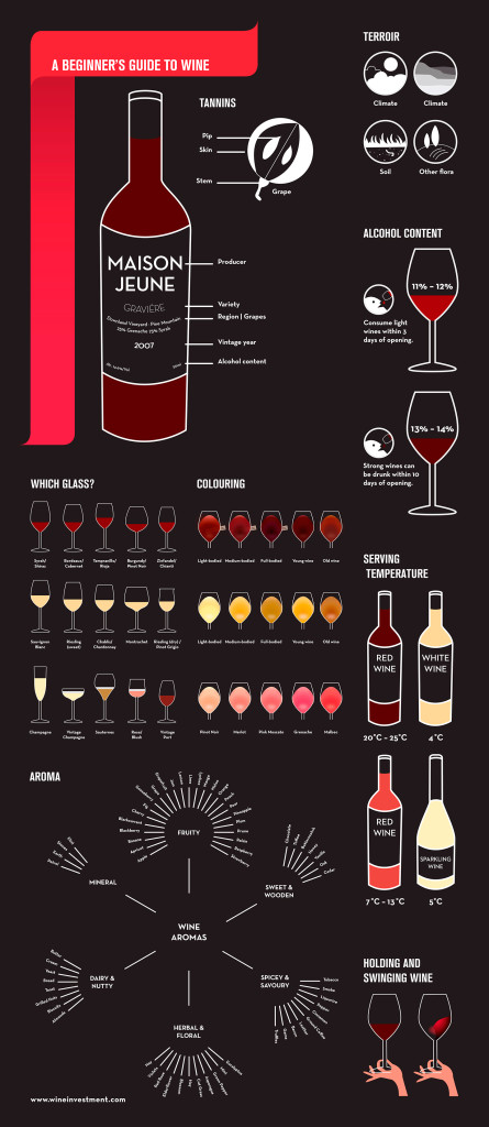 An infographic for the beginner's guide to wine